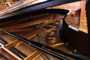 Mais um concerto inserido na temporada de música de câmara, em parceria com a Orquestra Metropolitana de Lisboa