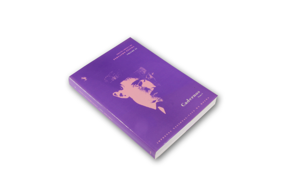 Photo 2 of product Cadernos - Vol. XI - Tomo I