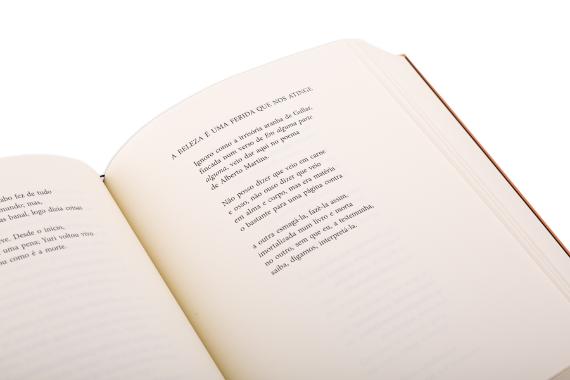 Foto 4 do produto Poesia (1990-2016)