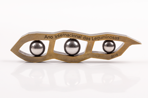 Foto 1 do produto Ano Internacional das Leguminosas