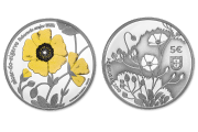 Endangered Flora Species - Tuberaria Major (Silver Proof)