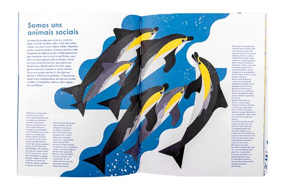 Foto 3 do produto Príncipe dos Mares, O Golfinho-Comum