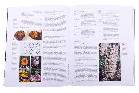 Foto 5 do produto Estrutura e Biologia das Plantas