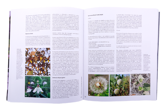 Foto 3 do produto Estrutura e Biologia das Plantas